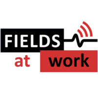 Fields at work